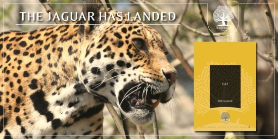essential foods jaguar
