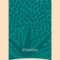 essential_foods_stamina